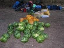 В Херсоне будут менять мусор на арбузы и дыни