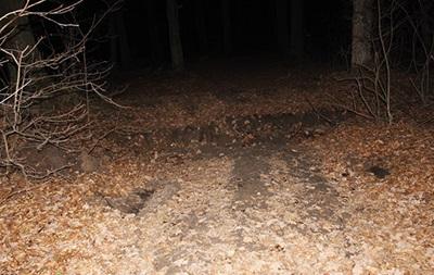 В Хмельницком иностранца избили и вывезли в лес