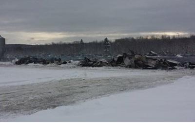 В Канаде при пожаре на ферме погибли 50 тысяч уток