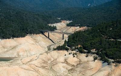 У Каліфорнії через посуху можуть загинути десятки мільйонів дерев