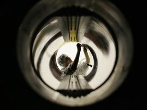 Большой адронный коллайдер остановлен из-за сбоя электроснабжения