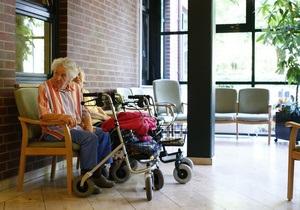 Власти США выделят на борьбу с болезнью Альцгеймера $50 млн