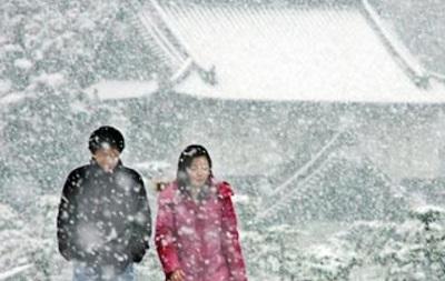 В Японии из-за непогоды эвакуируют десять тысяч человек