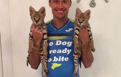 Милые котята: Долгополов завел себе африканских сервалов
