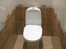 Американка прожила два года в туалете