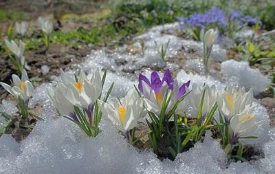 Київ побив річну норму температурних рекордів