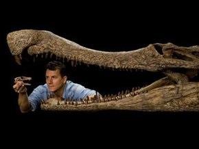 В Сахаре ученые обнаружили останки древних крококабанов и крококрыс