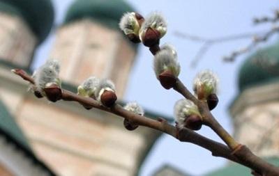 Вербное воскресенье отмечают православные христиане