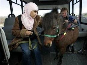 В Арабских Эмиратах появились автобусы для женщин