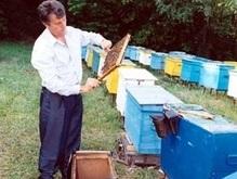 Директор Института пчеловодства получил орден от Ющенко