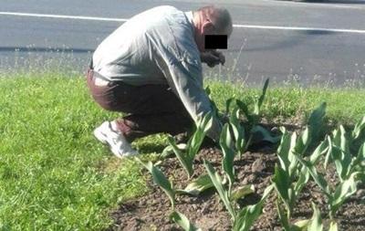 У Рівному поліцейські змусили п яного садити тюльпани