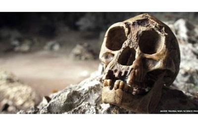 Вчені знайшли останки предка  хоббіта