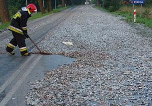 В Польше из-за рассыпавшейся по шоссе рыбы на несколько часов перекрыли движение
