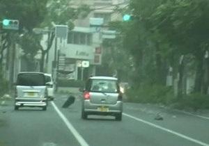 На Японию обрушился мощнейший тайфун. Более 7 тысяч домов остались без света