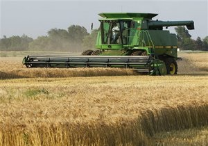 Кабмин может ввести квотирование экспорта зерна до 23 октября