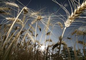 Киевский суд вернул в госсобственность 98 гектаров земли