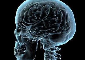 Ученые раскрыли механизм воспоминаний в человеческом мозгу