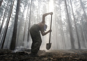 В Воронежской области РФ потушили все очаги возгорания