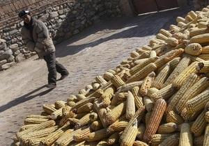 Милиция выявила факты подкупа избирателей семенами кукурузы