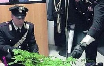 В Італії князь вирощував коноплю в родовому замку