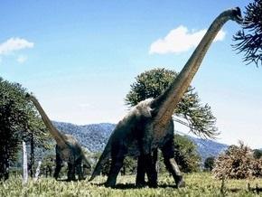 Британские ученые: длинношеие динозавры могли высоко поднимать голову