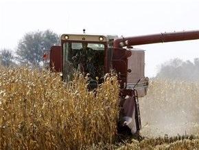 Дело: Украина зарабатывает на экспорте зерна