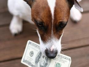 Американка просит Минфин обменять побывавшие в желудке собаки $400