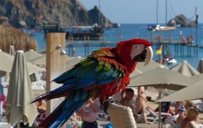 У турецькій Анталії заборонили алкоголь за межами готелів