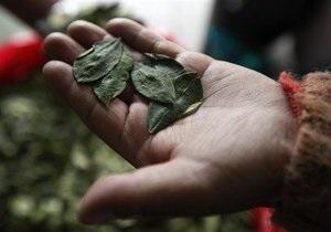 В Боливии разрешили жевать листья коки в ритуальных целях