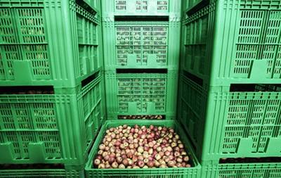 У Британії очікують дефіцит фруктів через холоди
