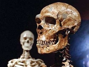 Ученые: Неандертальцы могли говорить и не пили молоко