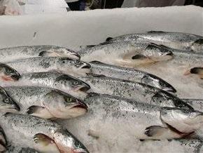 Под Киевом обнаружили склад некачественной рыбы