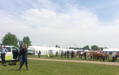 В Дании сбежавший бык ранил шесть человек