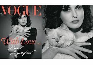 На обложке немецкого Vogue появится кошка