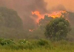 На западе Австралии полыхают лесные пожары