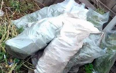 В Запорожской области у мужчины конфисковали три кило марихуаны