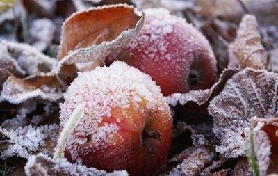 Украинцев ждут похолодание и заморозки