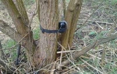 У Луганській області пенсіонер підірвався на розтяжці