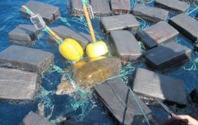 Американские моряки спасли черепаху, которая застряла в 800 кг кокаина