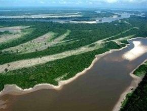 Бразильцев призвали мочиться в душе ради спасения тропических лесов