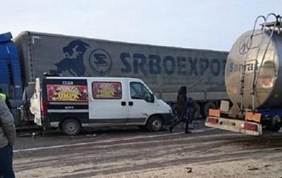 В аварии на трассе Киев-Чоп погибла цирковая лошадь