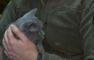 Київський рибоохоронний патруль взяв на службу кішку