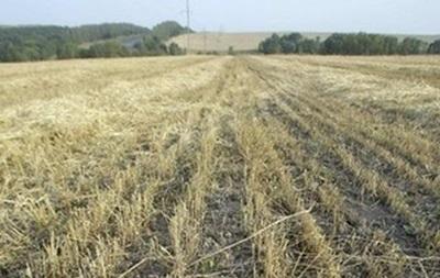 Кабмин намерен отдать фермерам полмиллиона гектаров земли