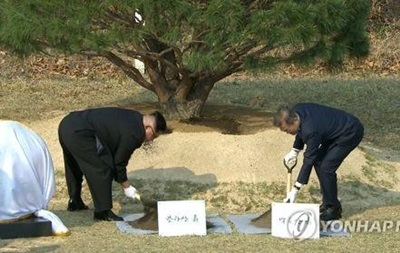 Лидеры Северной и Южной Кореи посадили сосну мира