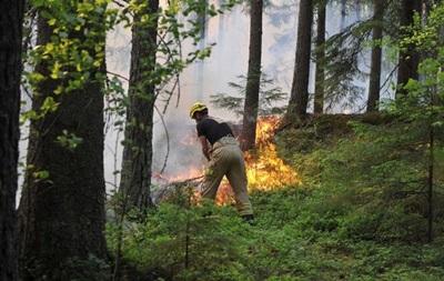 У Швеції через потяг зі зламаними гальмами загорівся ліс