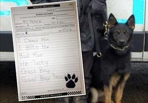 В Великобритании прокуратура попросила написать рапорт служебного пса