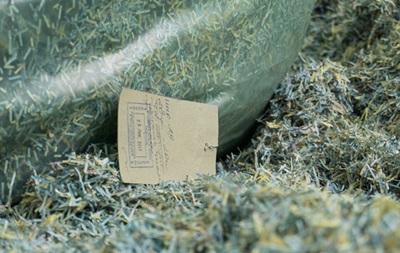 У НБУ прокоментували знайдене під Дніпром  кладовище гривень