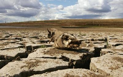 Без води з Дніпра. Наслідки посухи в Криму