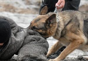 Крымская милиция решила отметить нагрудным знаком служебную овчарку
