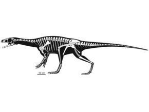 В Аргентине обнаружены останки ранее неизвестного динозавра